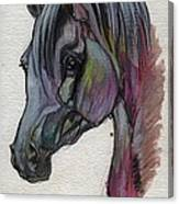 The Grey Horse Drawing 1 Canvas Print