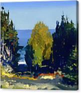 The Grove At Monhegan Canvas Print