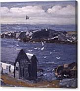 The Gulls Of Monhegan Canvas Print