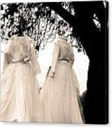 The Hanging Brides  Canvas Print