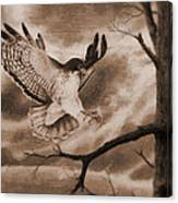 The Hawk Is Landing Canvas Print