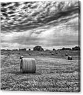 The Hay Bails Canvas Print