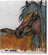 The Heavy Horse Canvas Print