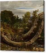 The Heron Disturbed Canvas Print
