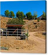 The Horse Ranch 2 Canvas Print