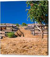 The Horse Ranch Canvas Print