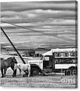 The Horses And The Welding Truck Canvas Print