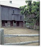 The Horses Are Out Of The Barn Canvas Print