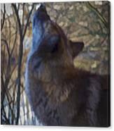 The Howl Canvas Print