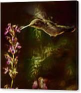 The Hummingbird Digital Art Canvas Print