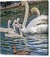 The Insular Family Canvas Print