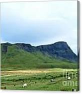 The Isle Of Skye In Scotland Canvas Print
