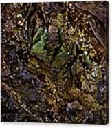 The Jewel Canvas Print