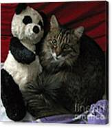 The King Kitty And Panda 01 Canvas Print