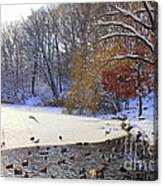 The Lake In Winter Canvas Print