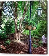 The Lamp Post Canvas Print
