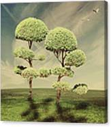 The Land Of The Lollipop Trees Canvas Print