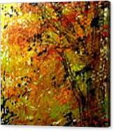 The Last Days Of Autumn Canvas Print