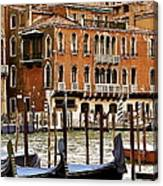 The Last Pigeon In Venice Canvas Print