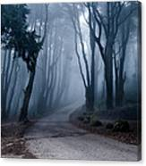 The Last Road Canvas Print