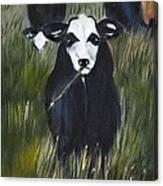 The Last Straw Canvas Print