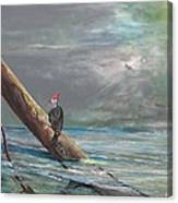 The Last Tree... Canvas Print