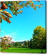 The Leaves Are Turning Golden... Canvas Print