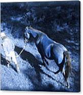 The Light And Shadows Of A Man And His Horse Canvas Print
