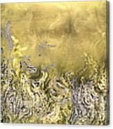 The Light Field Canvas Print