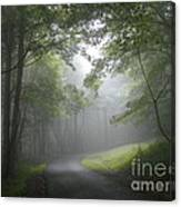 The Light Leading Home  Canvas Print