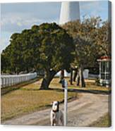 The Lighthouse Guardian Canvas Print