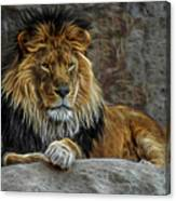 The Lion Digital Art Canvas Print
