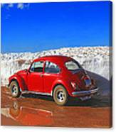 The Little Bug That Could Canvas Print