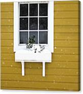 The Little Window Canvas Print