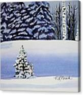 The Lone Christmas Tree Canvas Print