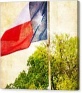 The Lone Star Flag Canvas Print