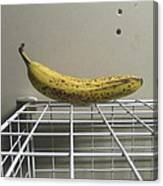 The Lonely Banana Canvas Print