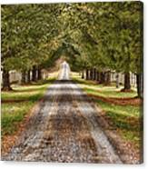 The Long Drive Canvas Print