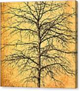 The Lord Jesus Is The Tree Of Life Canvas Print