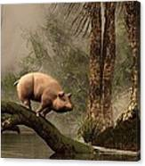 The Lost Pig Canvas Print