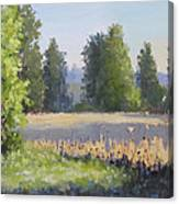 The Lower Field Canvas Print