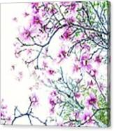 The Magnolia Fades Canvas Print