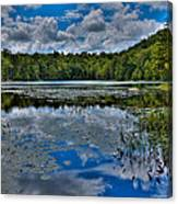 The Majestic Cary Lake Canvas Print