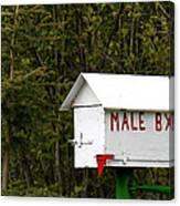 The Male Box Canvas Print