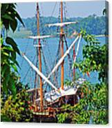 The Maryland Dove Canvas Print