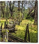 The Meadow Fence Canvas Print