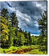 The Meandering Moose River Canvas Print