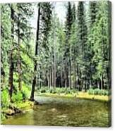 The Merced River  Canvas Print