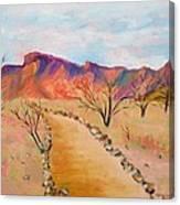 The Mesquite Trail Arizona Canvas Print