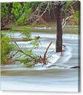 The Milky River Canvas Print